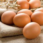 6 Verdades Sobre o Ovo Orgânico que Nunca te Contaram
