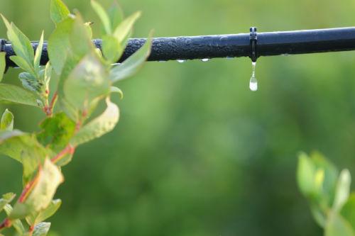 sistema de irrigacao por gotejamento imgrower