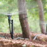 Porque deve Escolher o Sistema de Irrigação Correto para Produzir