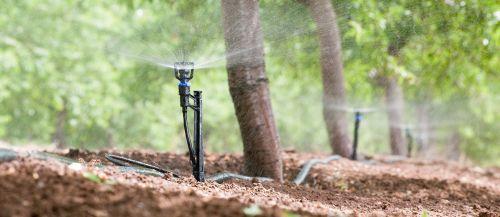 irrigação por microaspersao imgrower