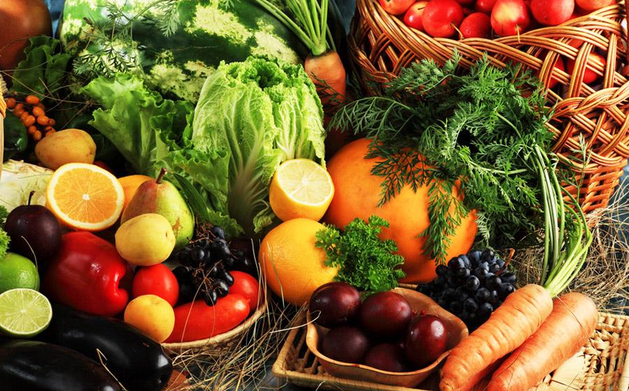 alimento organico imgrower