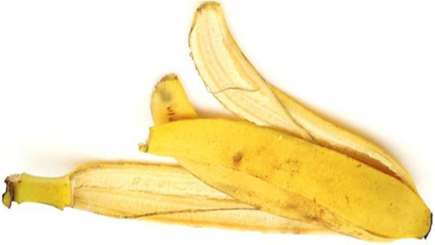 casca de banana: adubo organico da imgrower