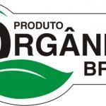 Porque o Selo Orgânico diz Tanto sobre Seu Produto