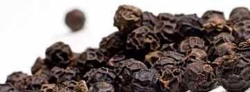 inseticida natural caseiro extrato de pimenta e alho-passo-2