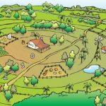 Porque a Permacultura foi Essencial para a Agricultura Orgânica