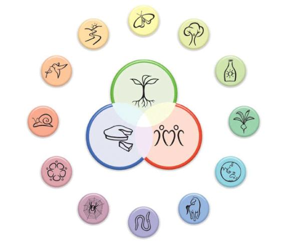 principios permacultura