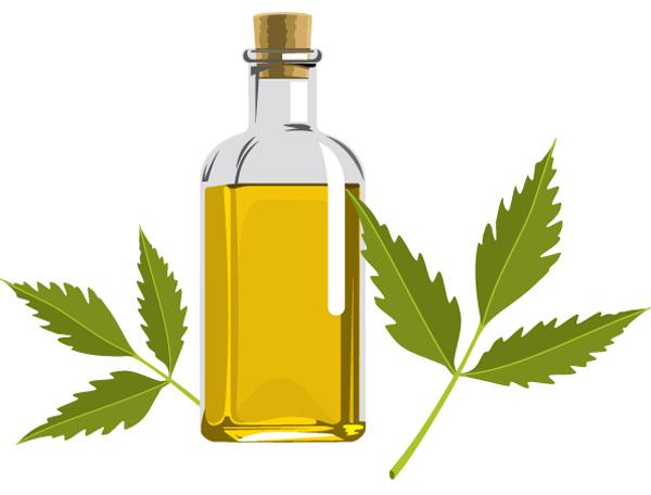 óleo de neem ou óleo de nim