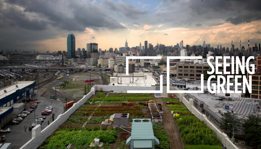 agricultura urbana cultivo urbano