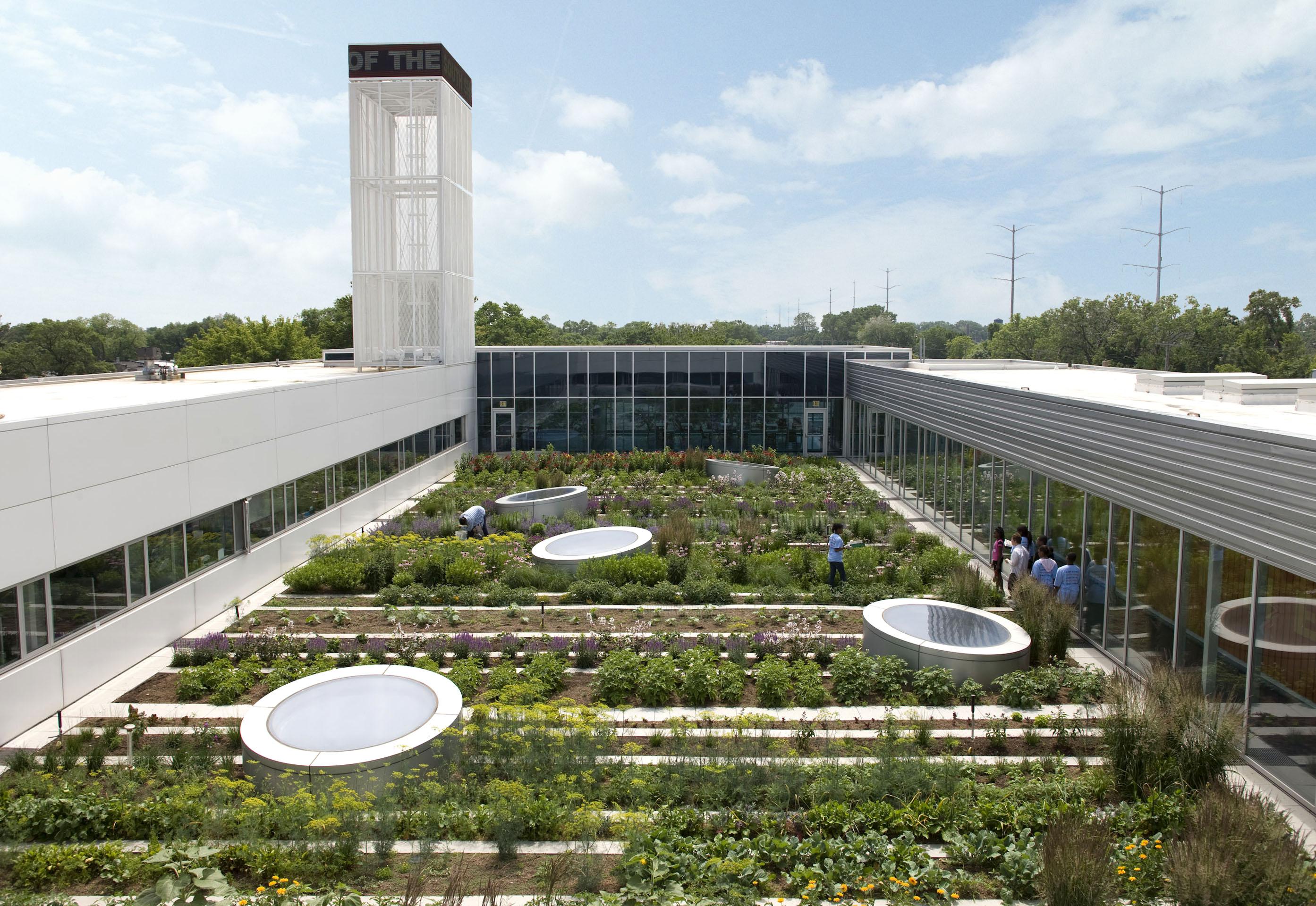 agricultura urbana horta familiar