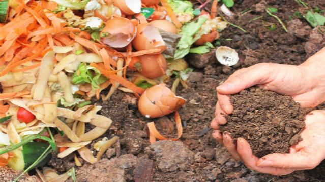 como fazer uma composteira doméstica - adubo orgânico caseiro