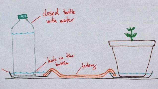 como fazer vaso auto irrigável