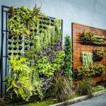 5 Tipos de Hortas Suspensas Orgânicas para Produzir em Espaços Pequenos