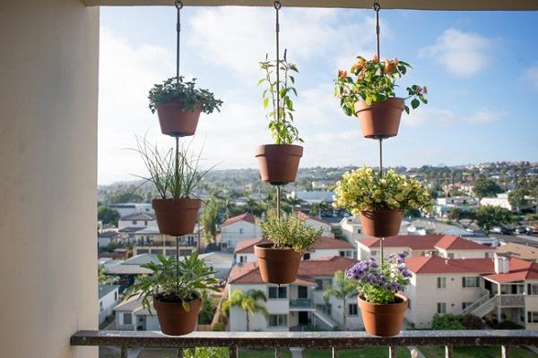 hortas suspensas jardins verticais