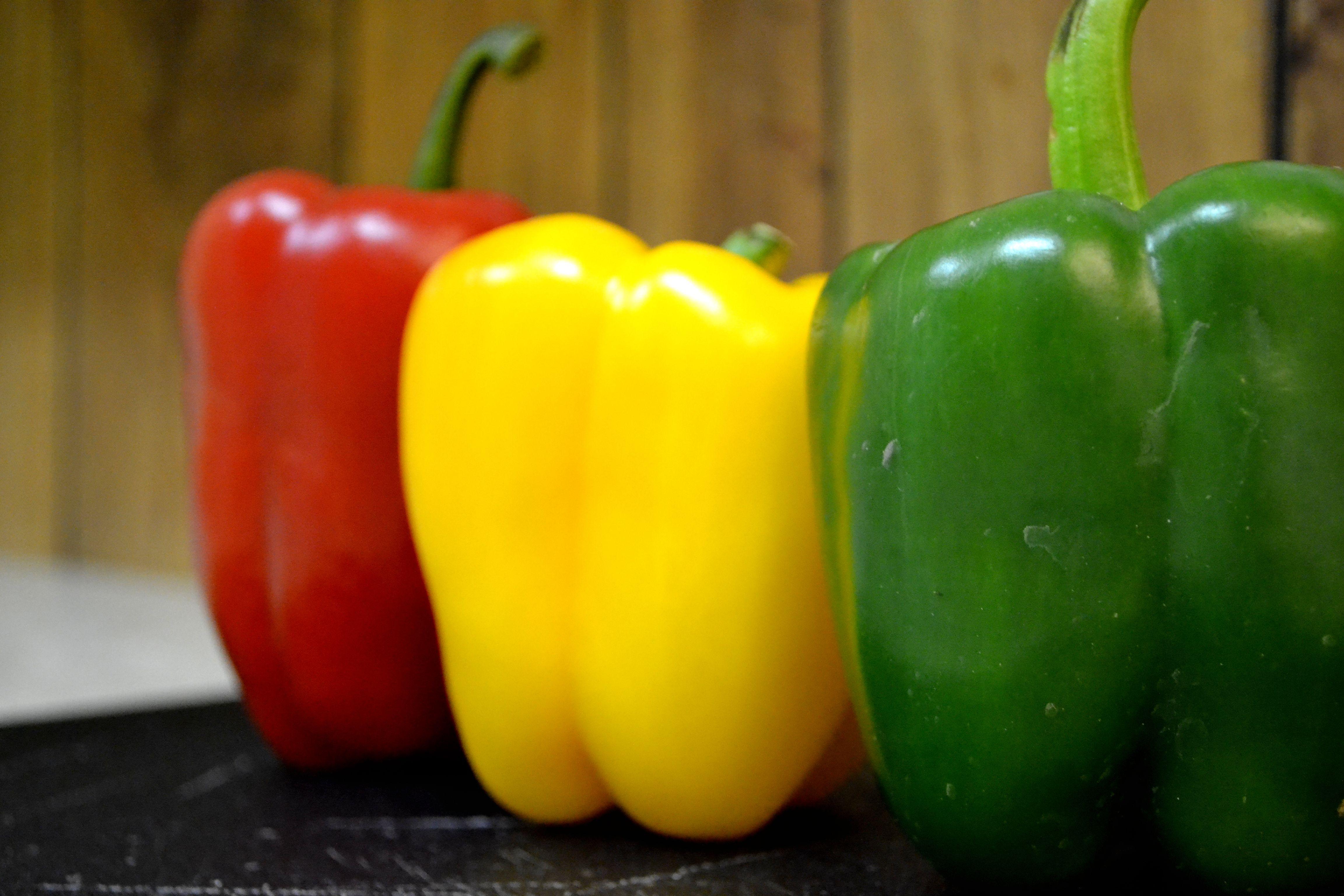 como plantar pimentão orgânico : horta orgânica