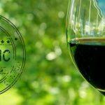 Você Sabe porque Vinhos Orgânicos são melhores para Saúde?