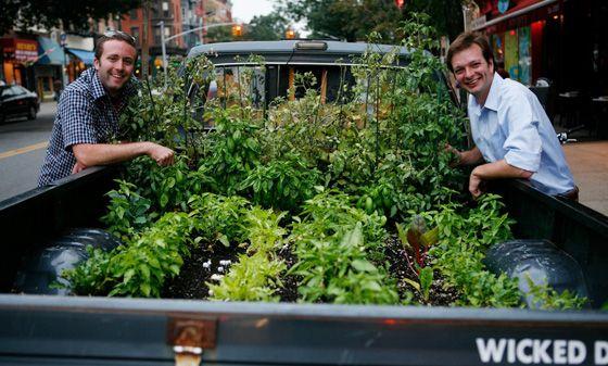 horta móvel truck farm : horta em pequenos espaços