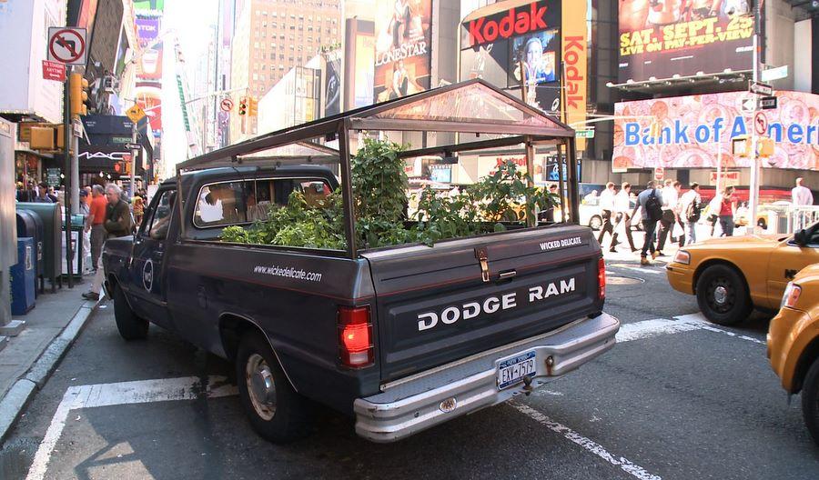 horta móvel truck farm : horta orgânica