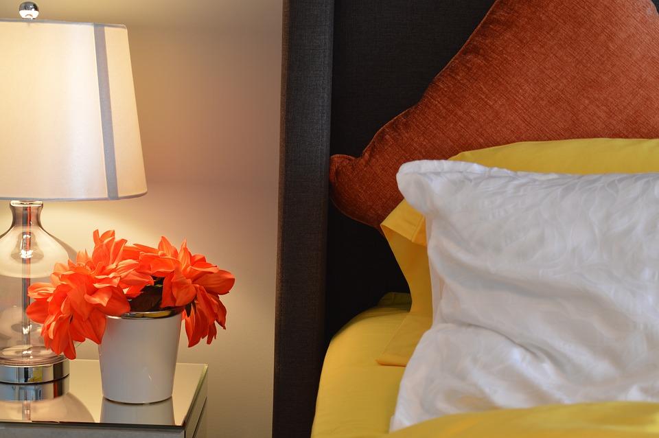 flores que purificam o ar : como purificar o ar do quarto