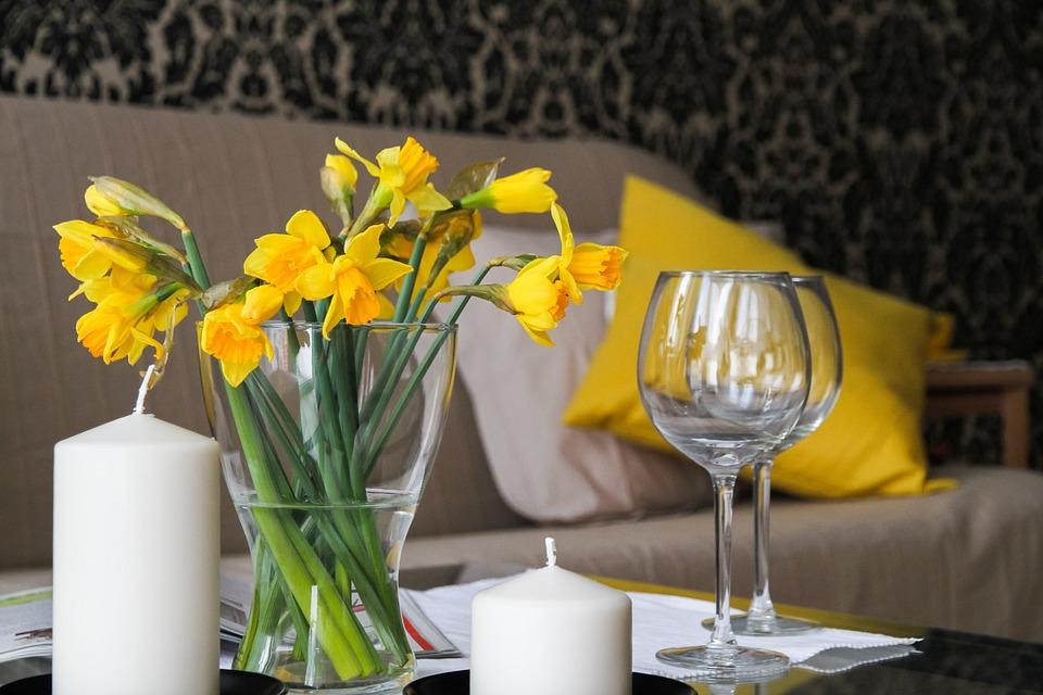 flores que purificam o ar : plantas de interior com flor