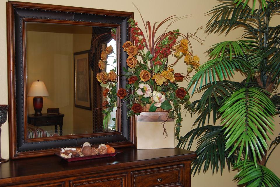 flores que purificam o ar : plantas para dentro de casa