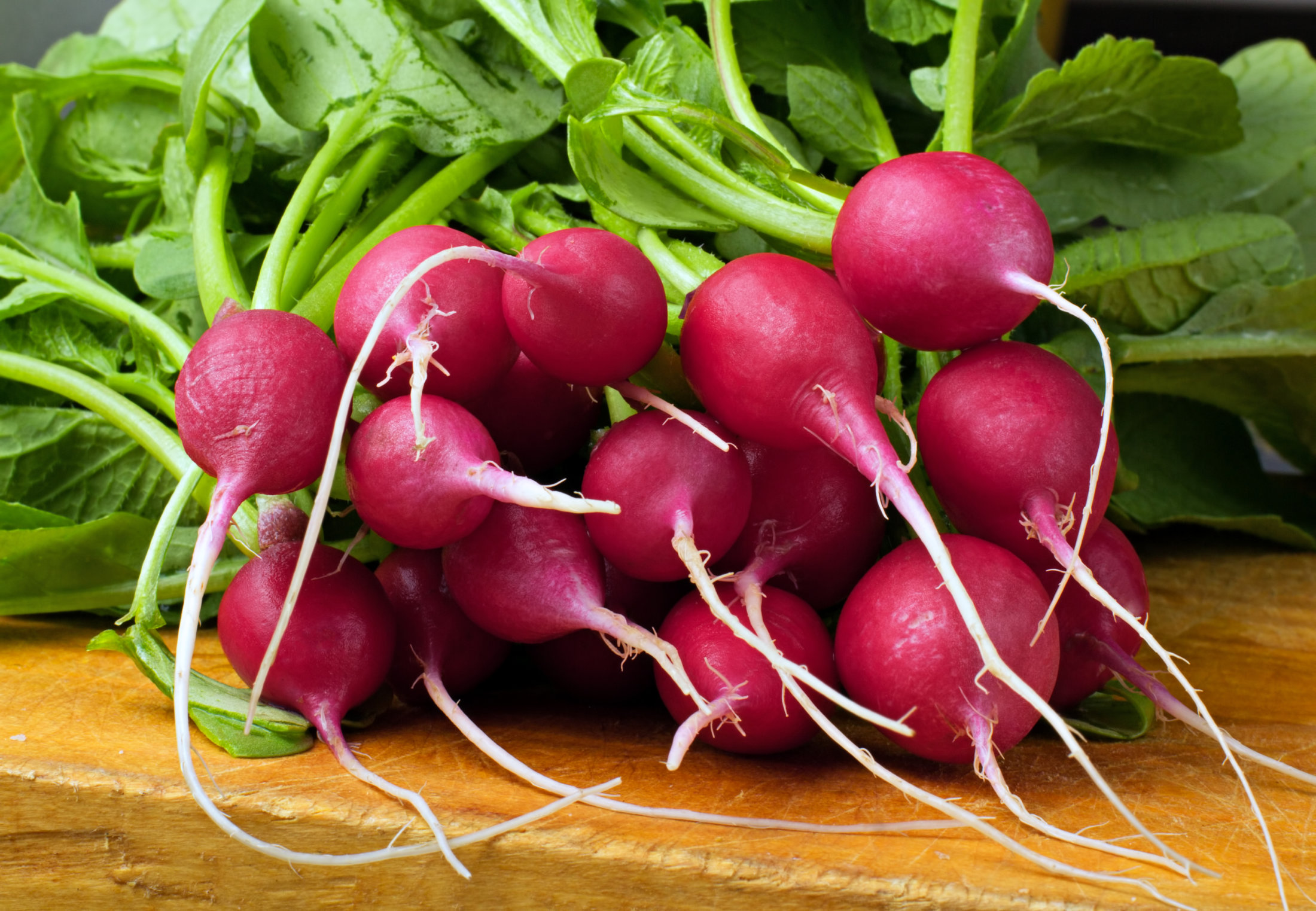 raízes comestíveis : alimentos caule