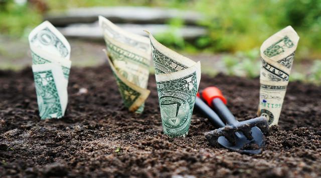 ebook controle de pragas, doenças e manejo de ervas daninhas da imgrower thiago tadeu campos