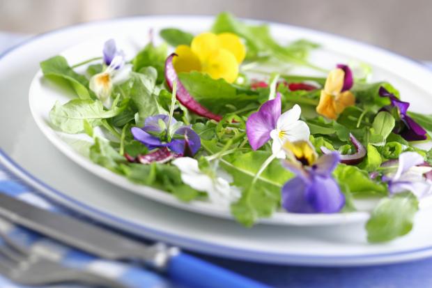flores comestíveis : caules comestiveis