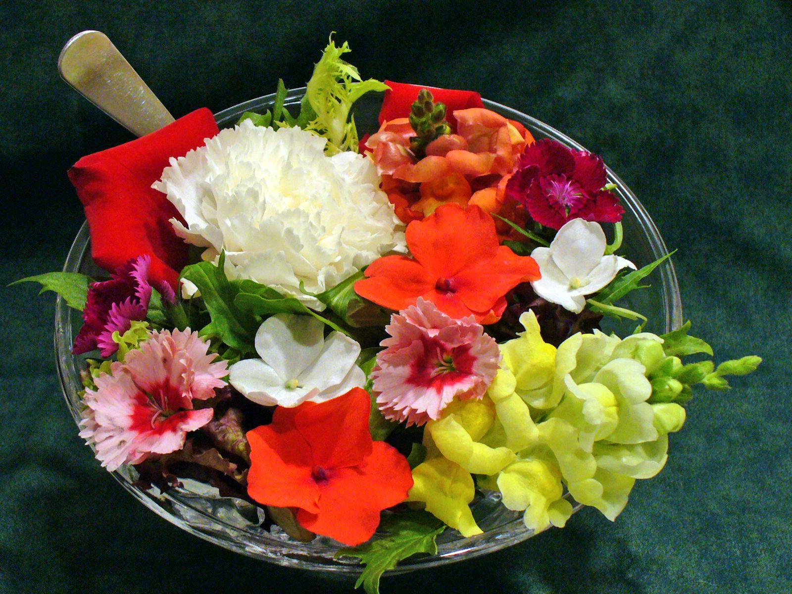 flores comestíveis : mudas de flores comestiveis