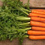 Tudo que Você Precisa Saber para Plantar Cenoura Orgânica