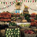 feira orgânica