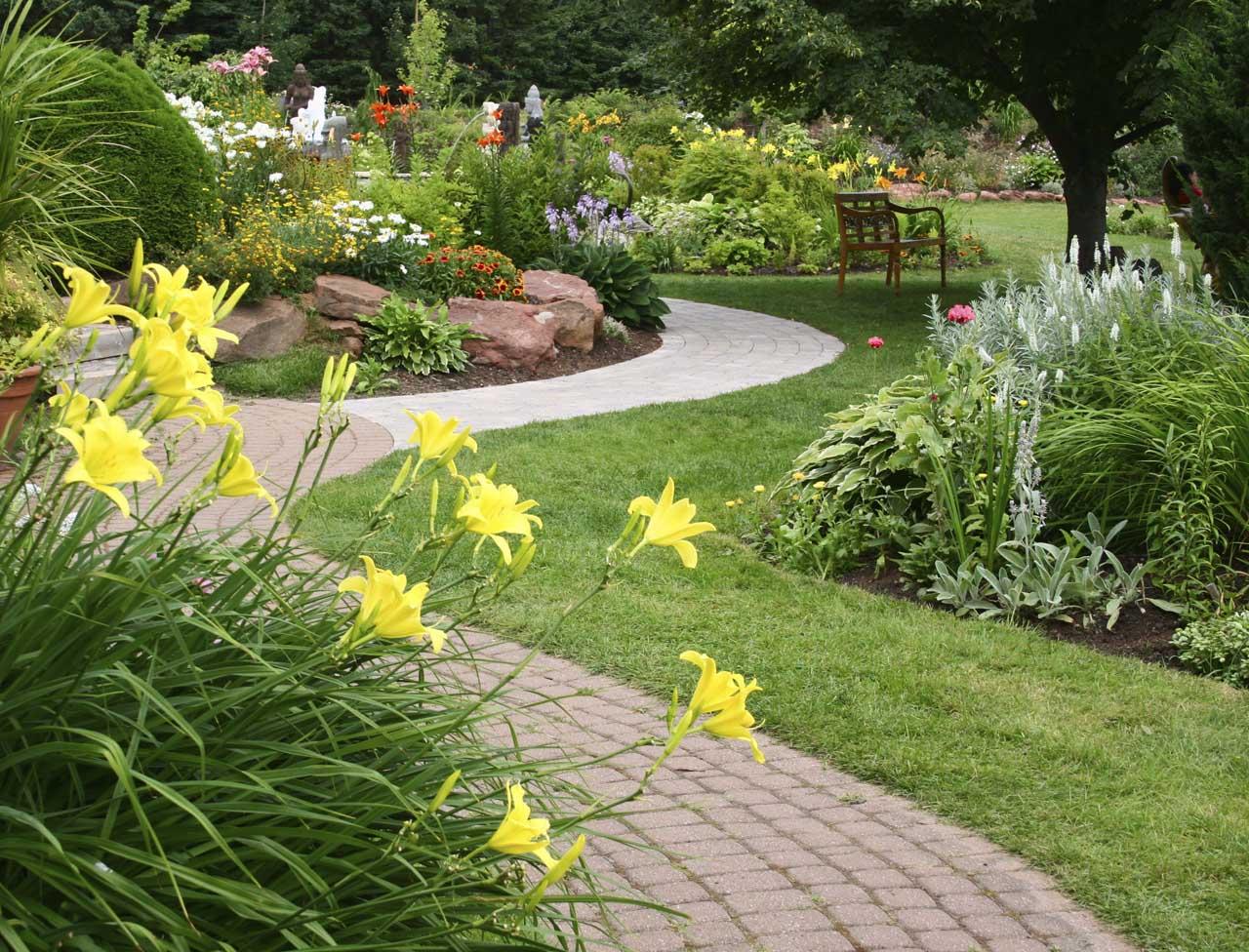 como cultivar plantas ornamentais : jardinagem e paisagismo