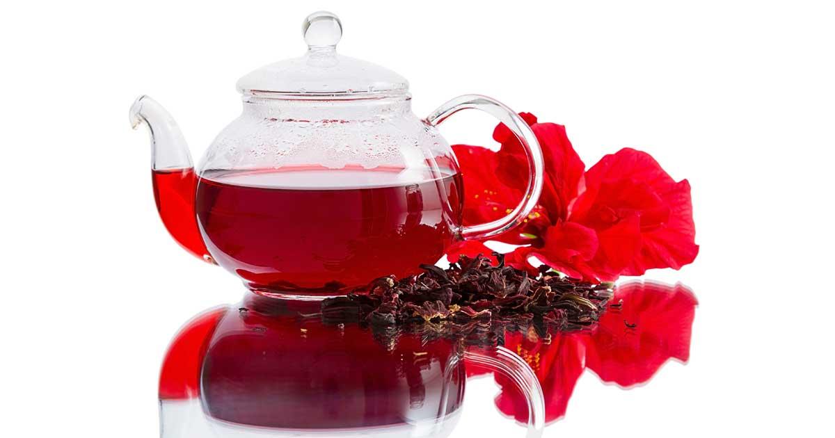 como plantar hibisco : chá da folha de hibisco