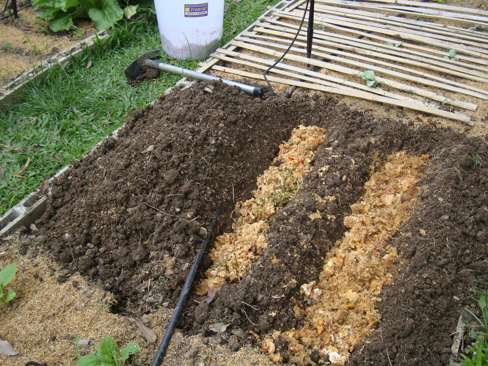 o que é e como trabalhar o adubo bokashi : como adubar a terra para plantar