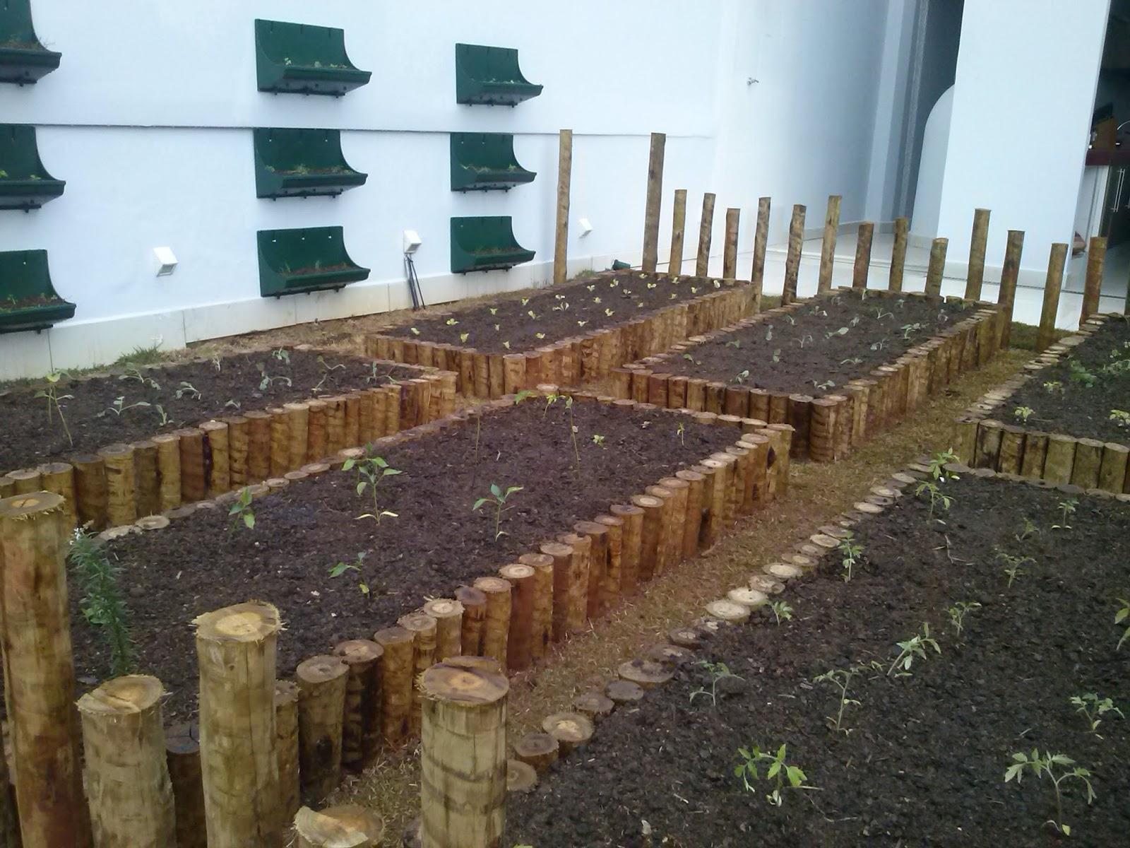 preparar o melhor substrato : substrato para plantas