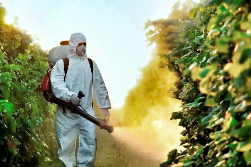 agricultura orgânica no Brasil : agrotóxicos