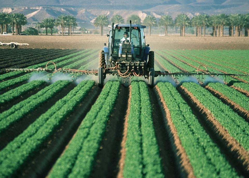 agricultura orgânica no Brasil : controle de pragas