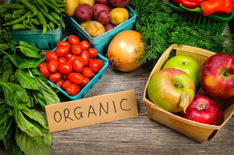 agricultura orgânica no Brasil : produtos orgânicos
