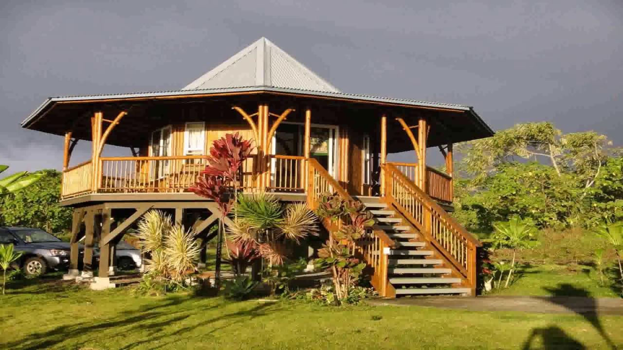 como plantar bambu orgânico : casa de bambu