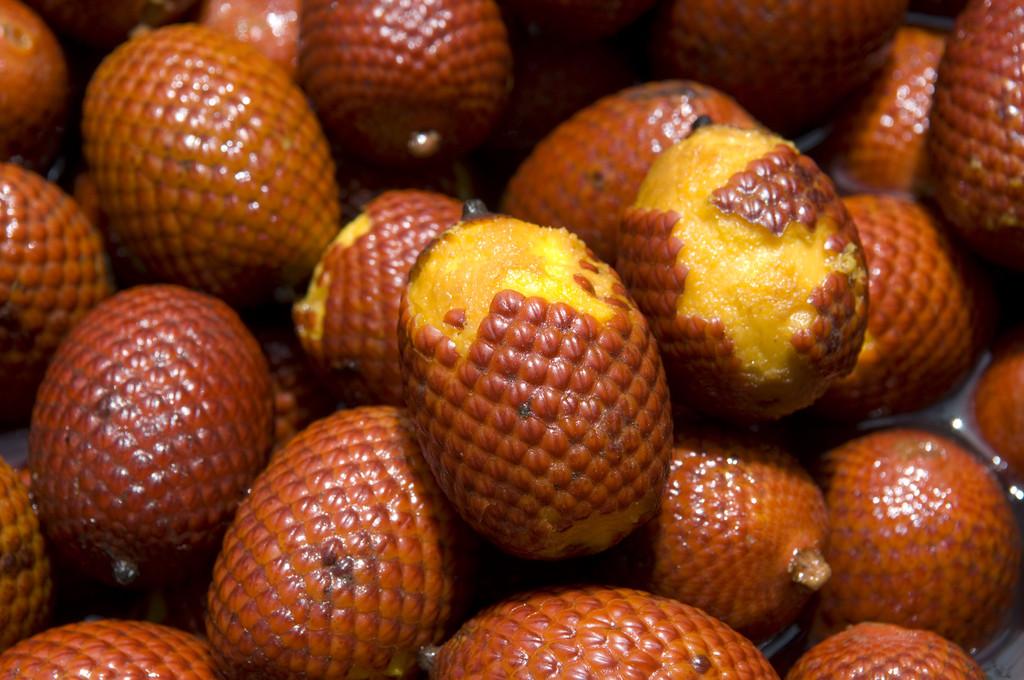 frutas exóticas brasileiras : buriti