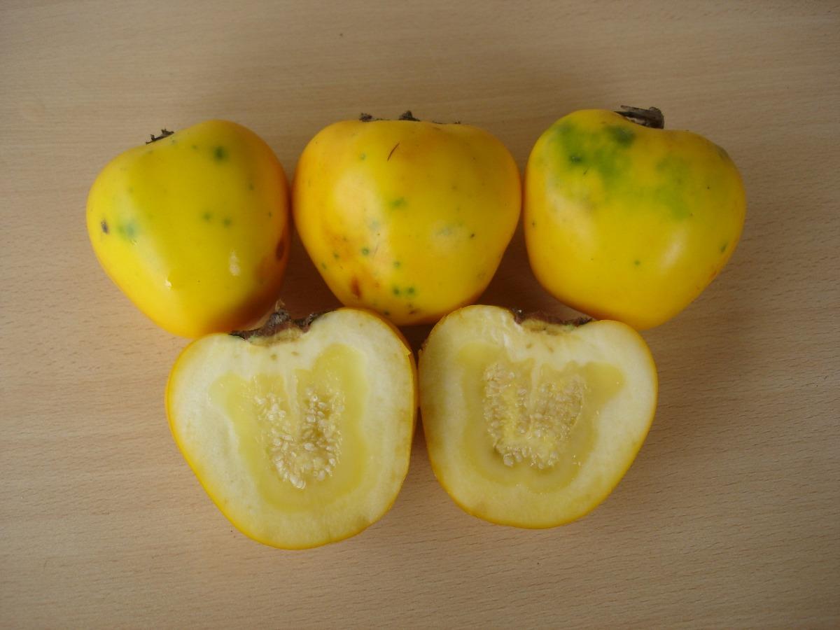 frutas exóticas brasileiras : maná