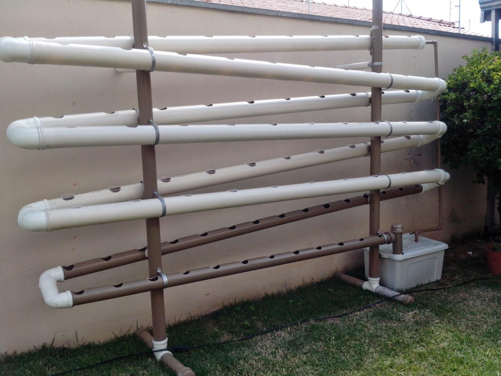 hidroponia em casa : horta de pvc