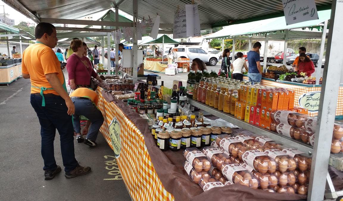 feira orgânica : comida orgânica