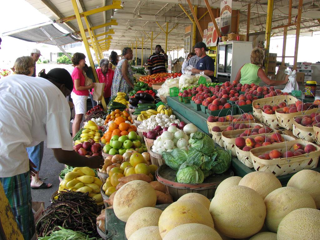 feira orgânica : feira de produtos orgânicos